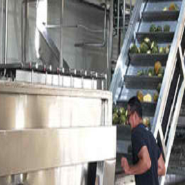 CONCENTRATED PINEAPPLE JUICE PRODUCTION LINE
