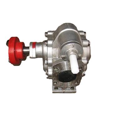 Stainless Steel High Pressure Gear Pump