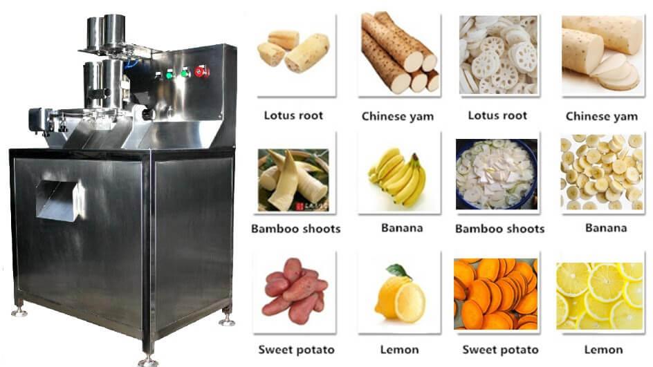 Figure 5 Automatic Fruit Slicing Machine