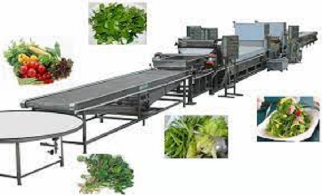 Figure 8 Vegetable and Fruit Processing Machine